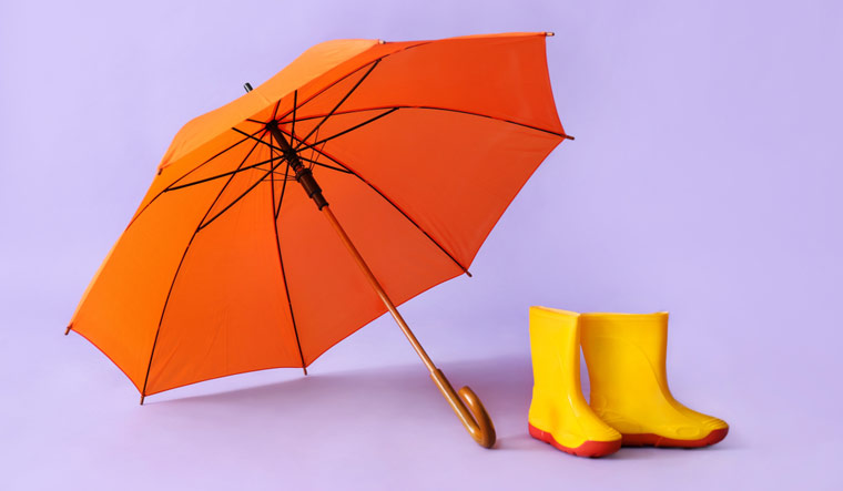 Umbrella-Shutterstock-950