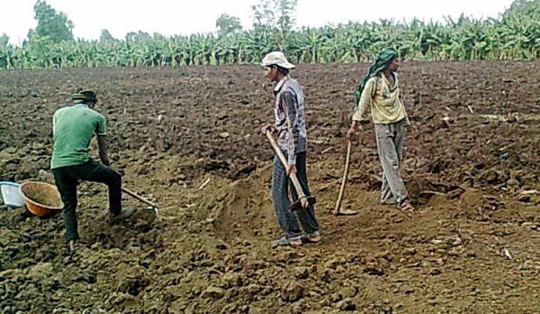 They beat us with motorcycle chains: bonded labourers recount horrors