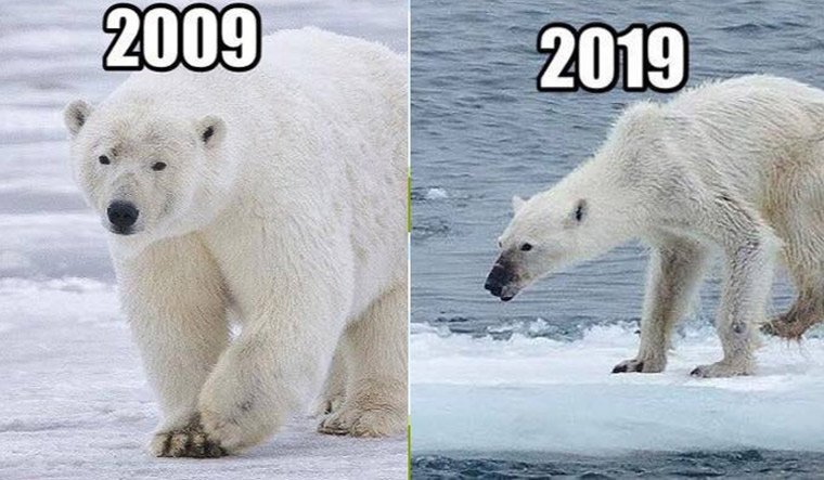How the 10-year challenge is taking the world by storm