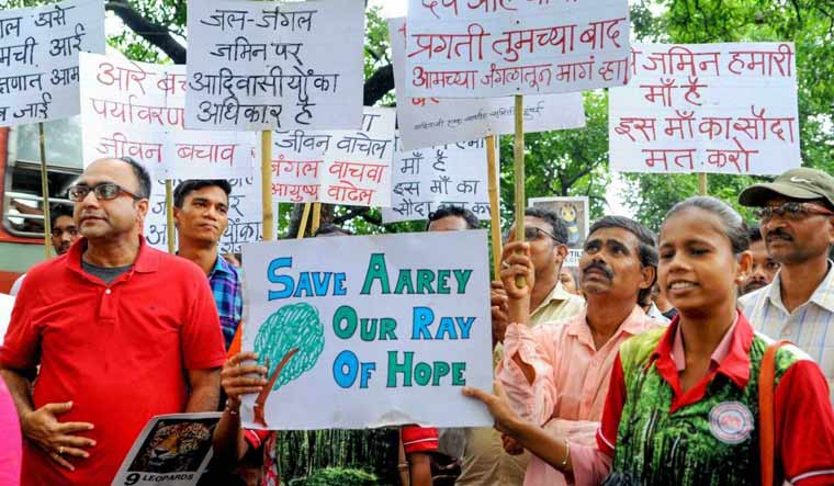 The Aarey struggle: A metro wakes up to protect its trees