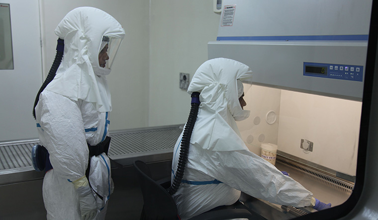 Testing times: Scientists at the National Institute of Virology, Pune. In the past few months, some of the country's leading virologists have moved from biosafety level 1 and 2 laboratories to the extreme biosafety level 4 facilities | Anirudha Karmarkar