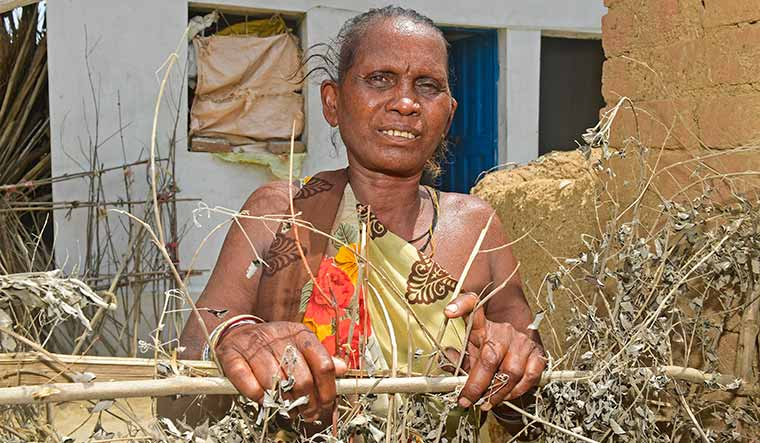 Unwitting carrier: Nonibai, who was identified as a source case in her village, does not have classical symptoms of leprosy | Amey Mansabdar