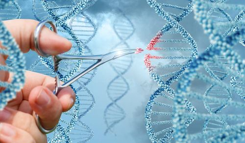 12-Gene-editing-inside