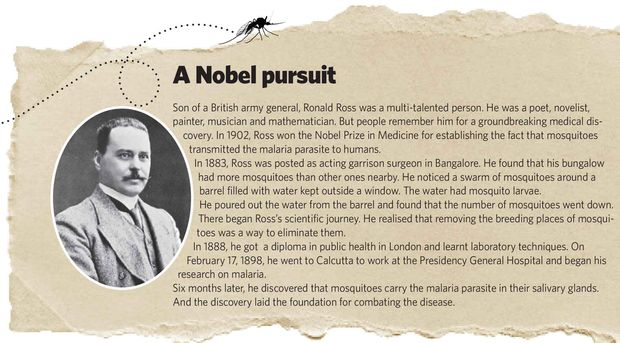 A Nobel pursuit