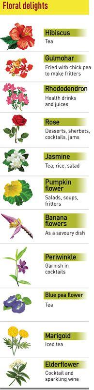 61-floral-delights-week