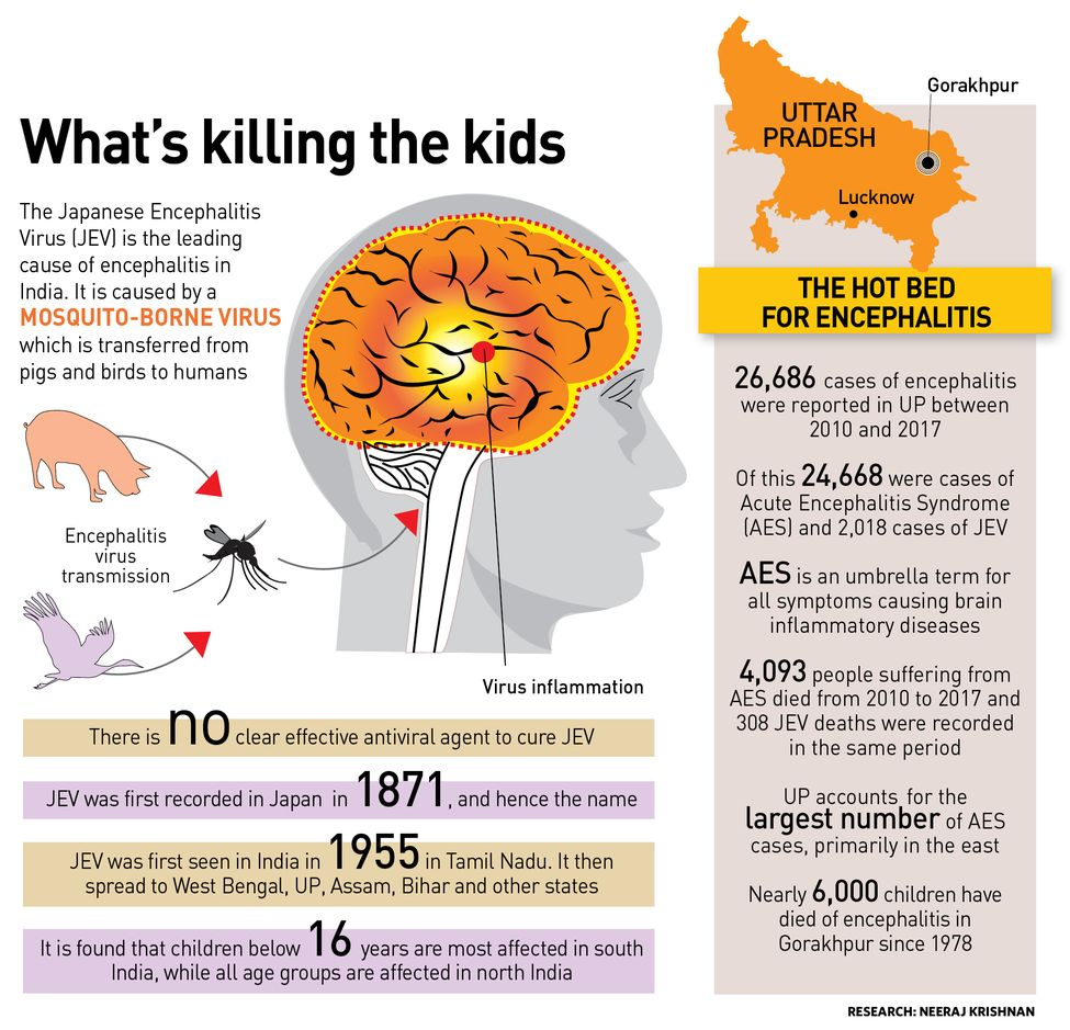32-Whats-killing-the-kids