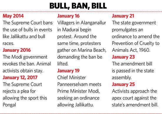 39-bull-ban-bill