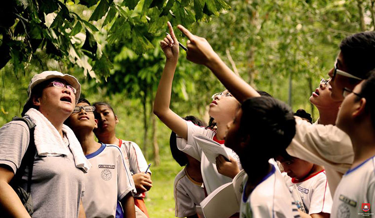 Practical learning: Studying a plant at a class outdoors.