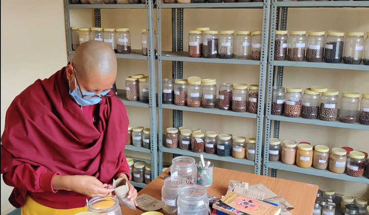 Keeping alive a legacy: A Sowa-Rigpa doctor at the National Research Institute for Sowa-Rigpa in Leh