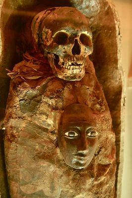 A mummy preserved at the Indian Museum | Salil Bera