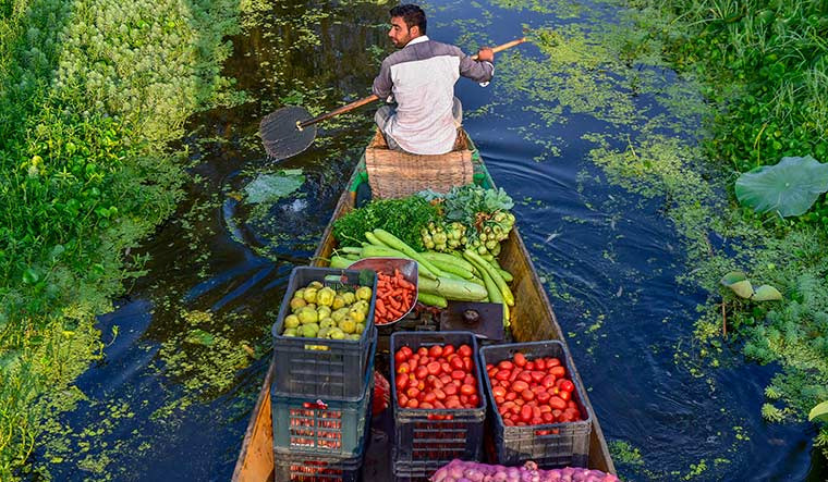 We have secured Rs 8,000 crore to finish the work on all incomplete projects.... Dal Lake will be restored to its original glory in a year | PTI
