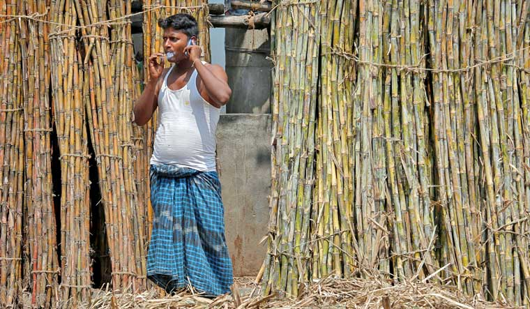 sugar-cane-sugar-mill-reuters
