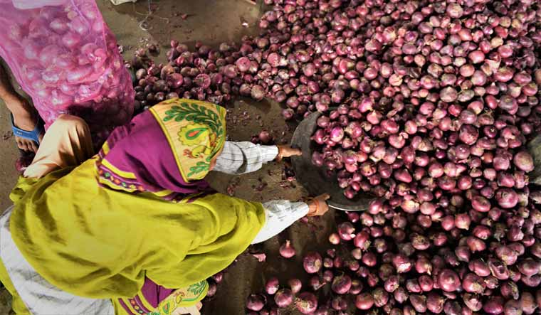 Government prohibits export of all varieties of onions amid rising prices