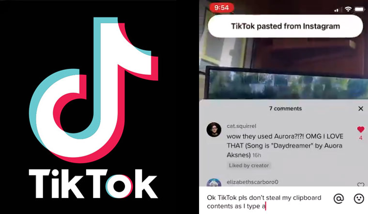TikTok-keyboard-snooping-Twitter