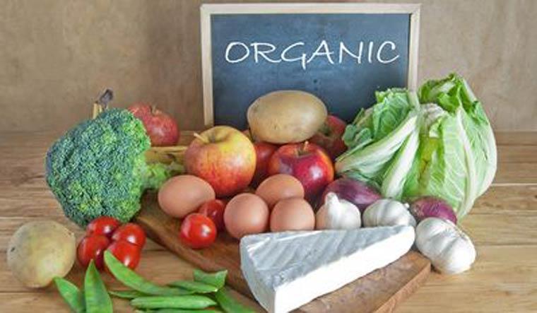 organic-foods-representational