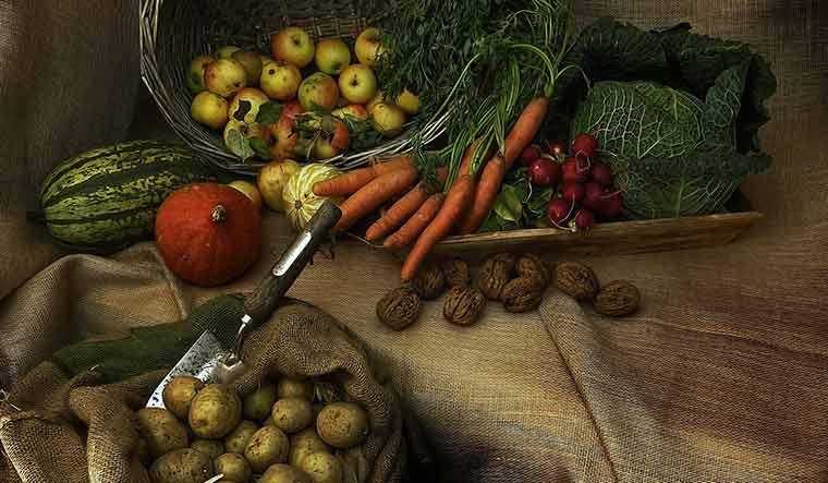 agriculture-agritech-representational-pixabay
