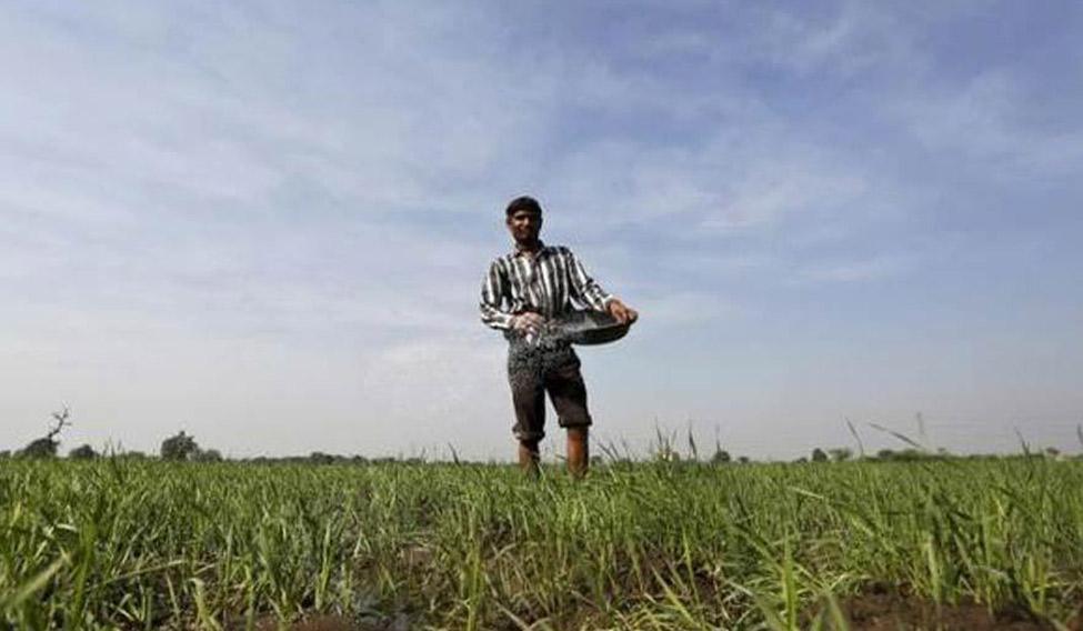 new-farmer-distress-rep-reuters