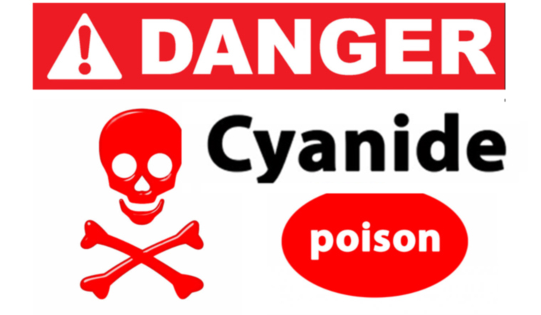 Cyanide may have been key to origin of life: study