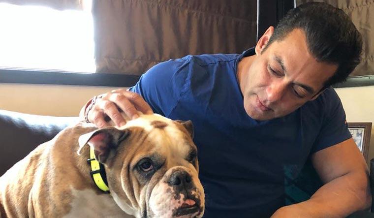 salman-khan-with-dog