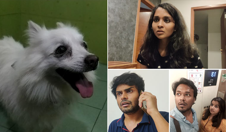 survival-stories-Rahul-Riji-Nair-lockdown-film