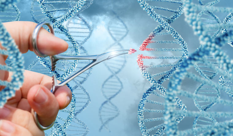 Israeli scientists discover method of 'reversing ageing': Does it live up  to the hype? - The Week