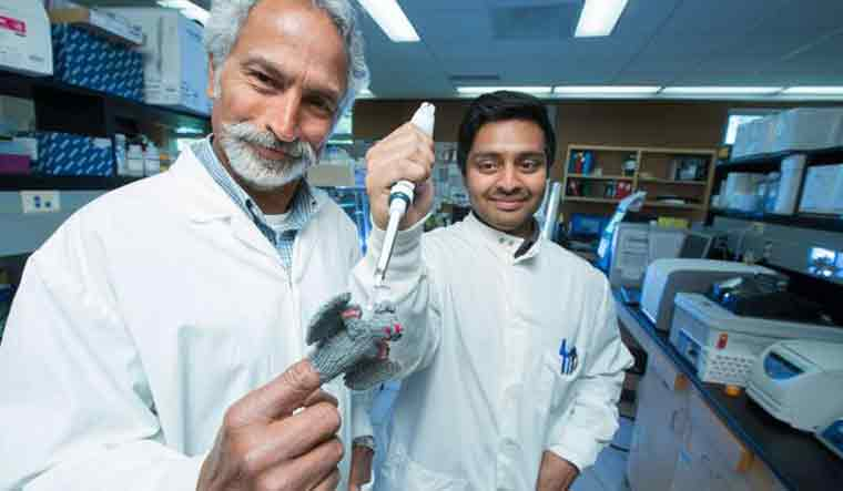 usask-researchers