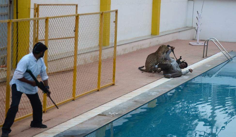 INDIA-ANIMAL-LEOPARD