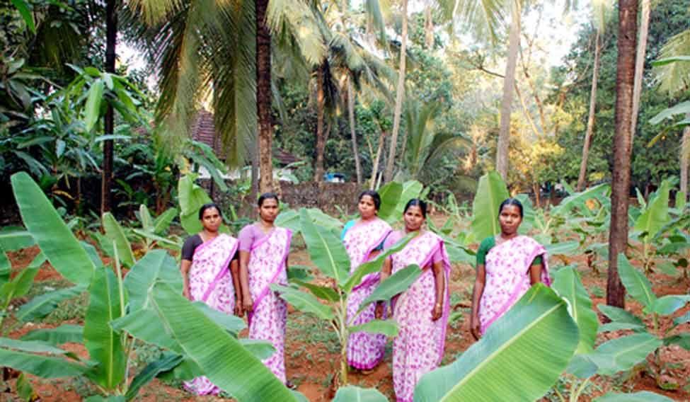 kudumbashree-kerala-women