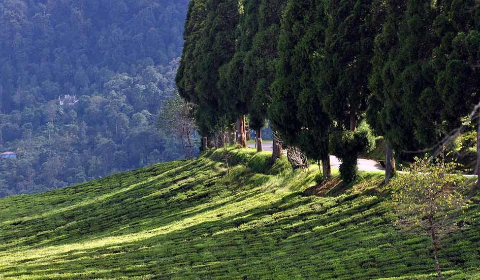 How Sikkim managed to be the cleanest state