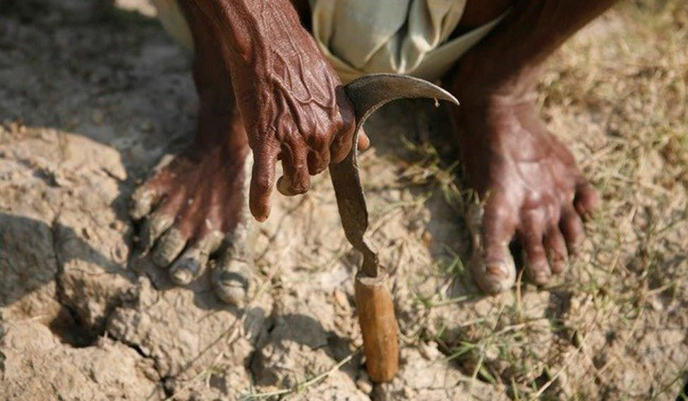 farmers-suicide-reuters