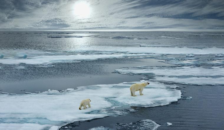 arctic-shutterstock