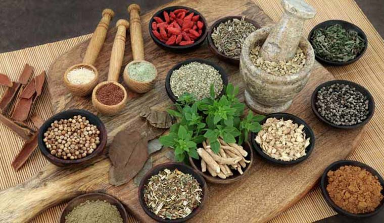 Leads way to Ayurveda -  Storial
