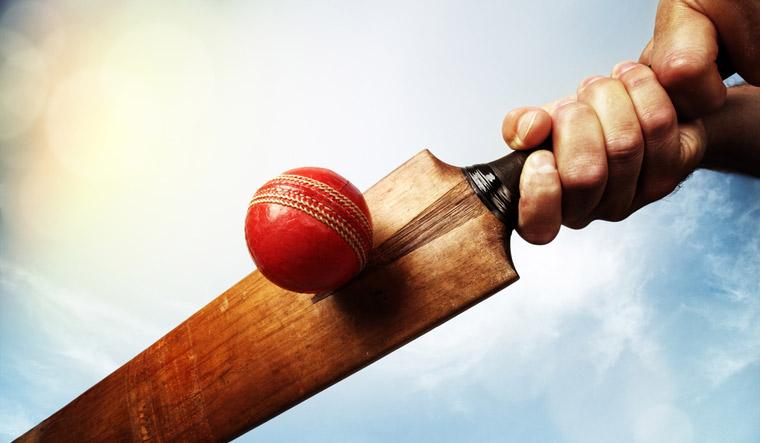 ball-cricket-ball-leather-red-cricket-bat-ball-shut