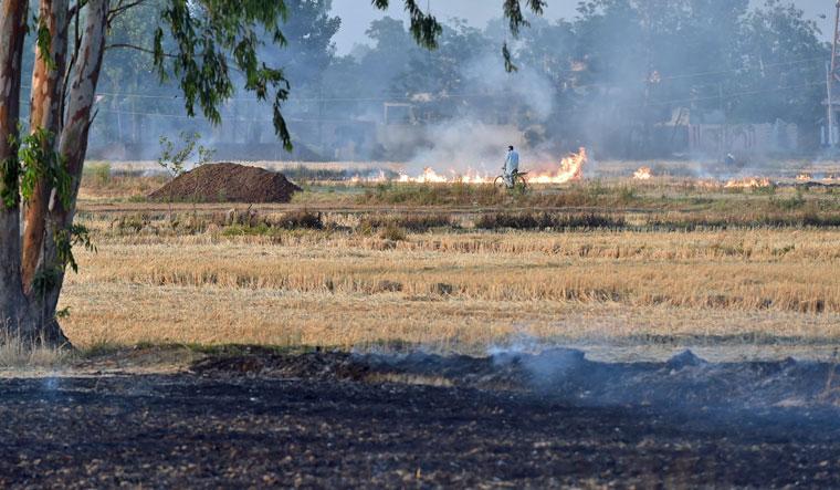 stubble-burning-punjab-delhi-pollution-aayush