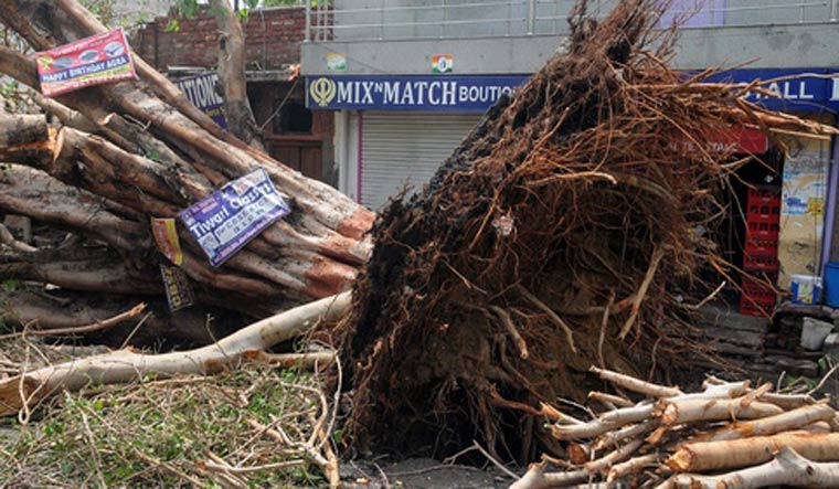 At least 116 dead as storms batter India