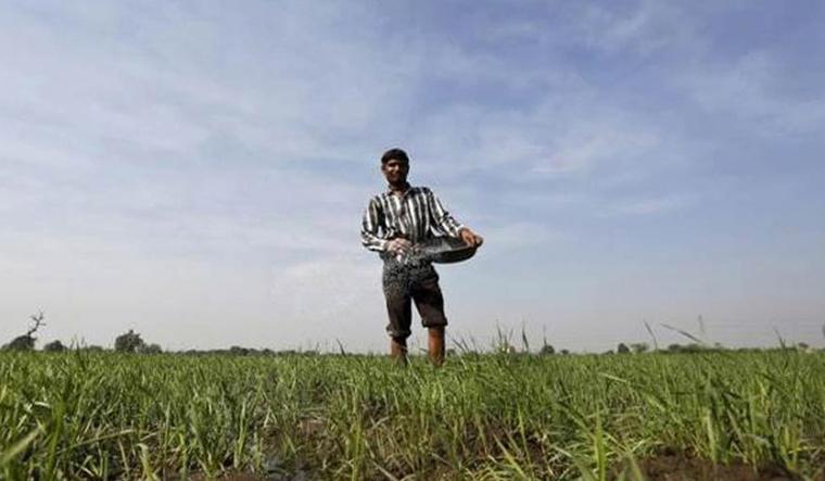 Representational image of farmer