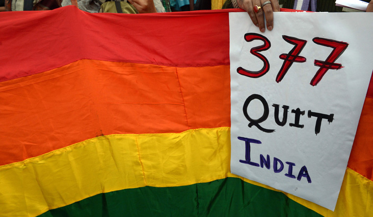 Section 377 Banner