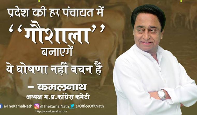 Kamal Nath gaushala
