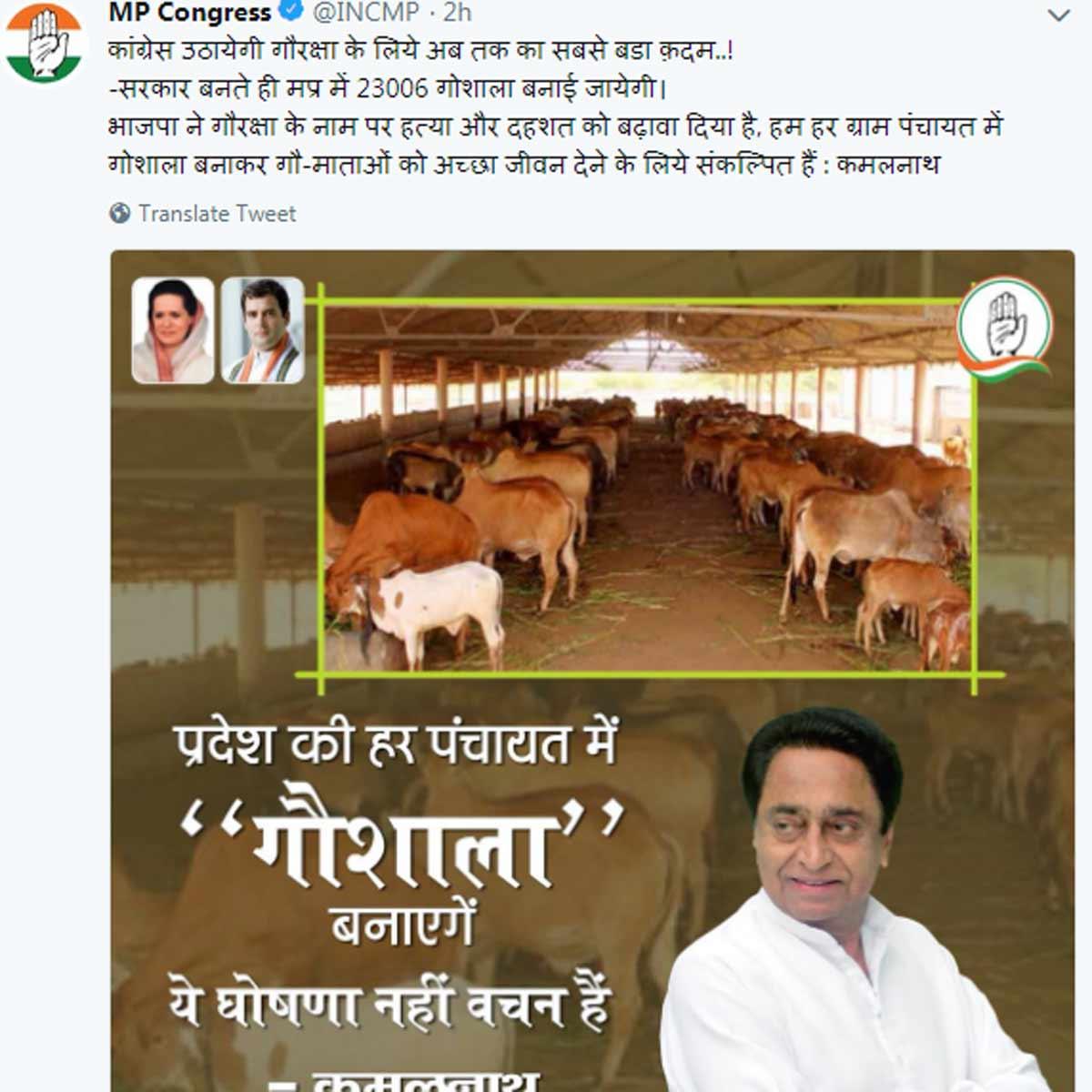 mp-congres-tweet