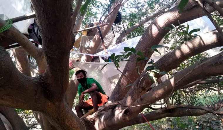 labourer-tree-bengal-purulia-PTI