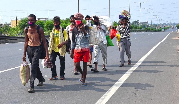 migrants salil