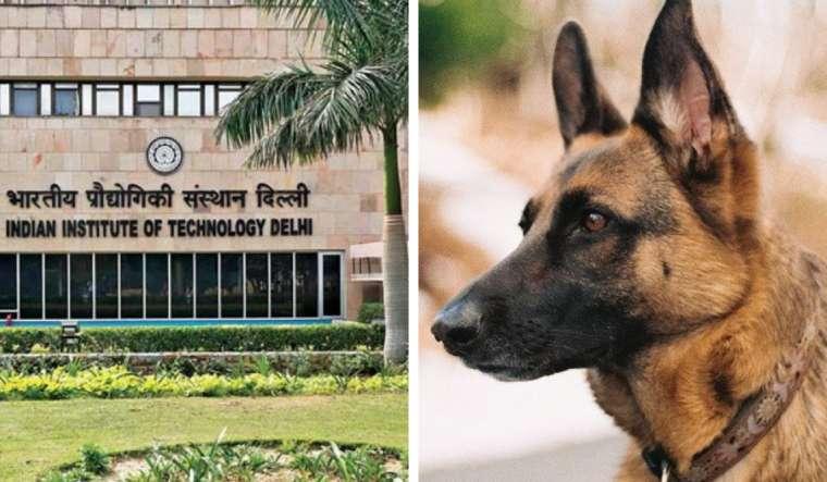iit-delhi-dog-ad