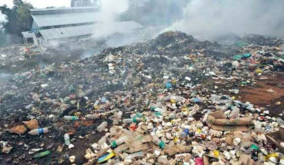 Fungus That Devours Plastic May Help Clean Environment