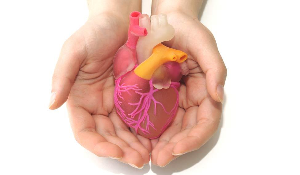 heart-3d