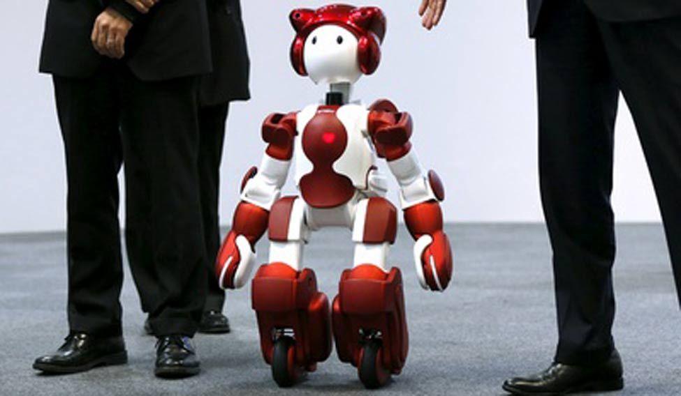 Robot-humanoid