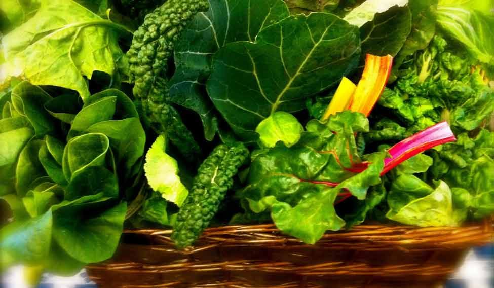 green-leafy-vegetables-reut