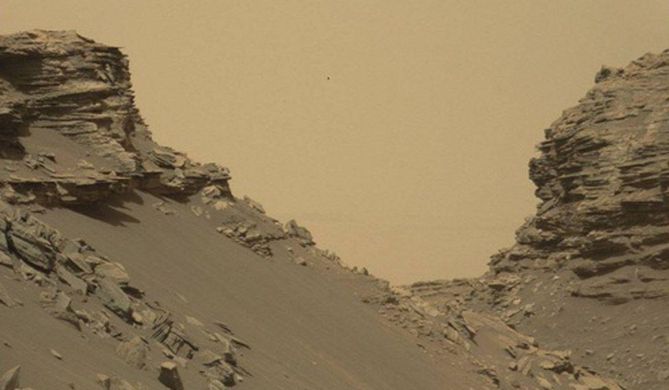 Mars-Murray-butts