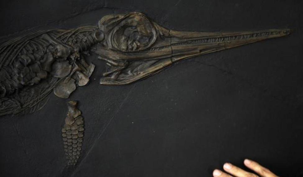 prehistoric-remains-rep-reuters