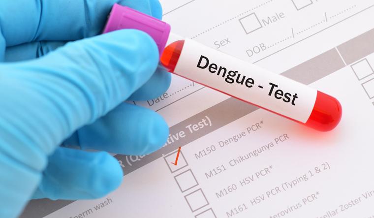 dengue-test-mosquito-health-disease-shut
