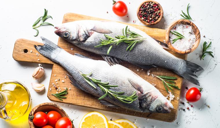 fish-diet-fish-food-shut